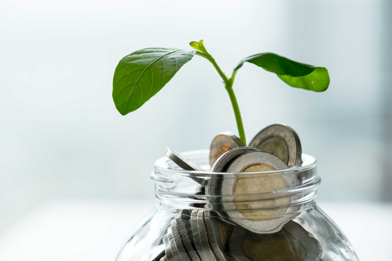 Channeling prosperity for purpose